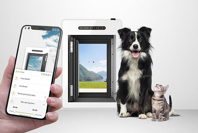 gadget tecnologici gatto cane